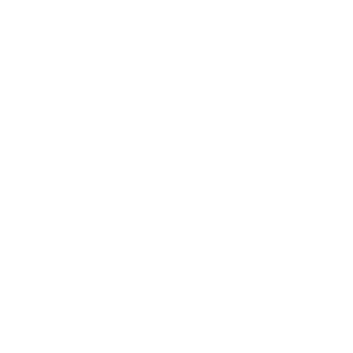 Rally del Carnevale